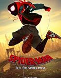 Spider-Man Into the Spider-Verse (2018) Dublat in romana Online